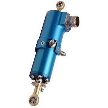 50 ton 150 mm Vérin hydraulique avec écrou de sécurité  Cilindro hidráulico