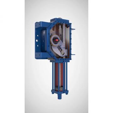 100ton 100 mm Vérin hydraulique avec écrou de sécurité Cilindro hidráulico
