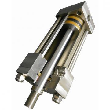 Hydraulique double pilote à clapet Kit pour vérin à double effet