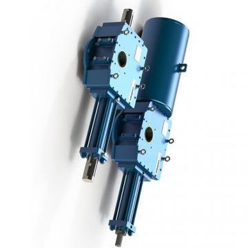 30ton 300mm 700bar Vérin hydraulique à double effet Cilindro hidráulico