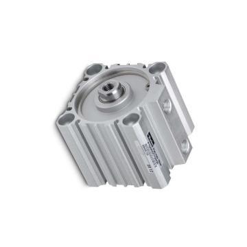 PARKER double action P1D Tie Rod Cylindre 200 mm alésage 100 mm course H9ML3 9060991