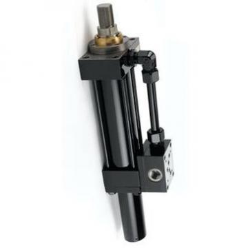 PARKER P1A-S020DS-0200 pneumatique Roundline Cylindre 20 mm Diamètre, 200 mm Stroke