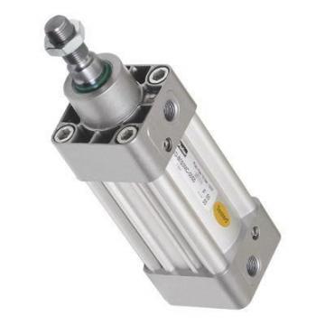 PARKER Pneumatique Air Cylindre Actionneur Linéaire 40 mm alésage 80 mm AVC P1D