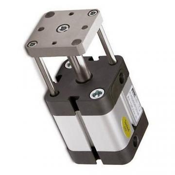P1D-C100MSN0710 PARKER double effet VDMA Cylindre 100 mm Diamètre x 710 mm AVC