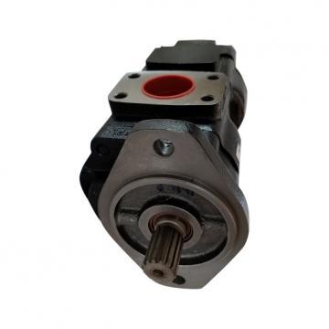 Double Jcb Pompe Hydraulique Pour Jcb 3CX Noir Cab 919/27100, 919/72400