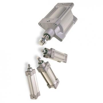 Vérin compact Pneumatique Parker C05S-20-10-4 Simple Action Neuf + Prestolok 6