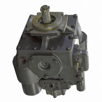 Pompe à Piston Oscillant Si-20