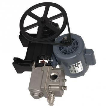 Pompe à graisse - GISS - 500 ml - Diamètre de piston 9 mm
