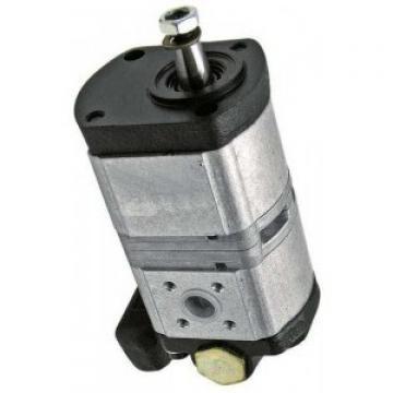 Nouveau Vai Steering pompe hydraulique V10-2632 Haut allemand Qualité