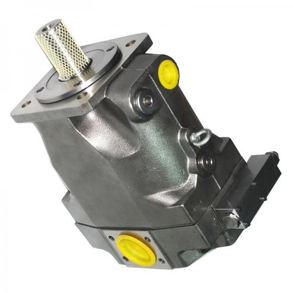 Genuine PARKER/JCB Pompe Hydraulique Avec Gear 20/906100 MADE in EU #1 image