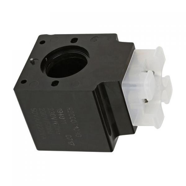 Bosch Rexroth AG 4WE6W60/EW110N9K4 R900552533 Hydraulique Valvule Directionnel #1 image